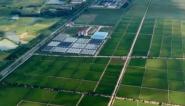 中央一号文件:全面推进乡村振兴加快农业农村现代化