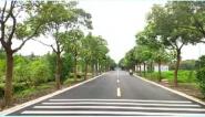 到2035年农村公路总里程稳定在500万公里左右