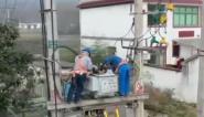 廬江:春茶生產忙  供電做保障