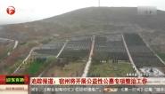 宿州将开展公益性公墓专项整治工作