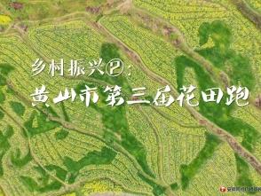 乡村振兴②:黄山市第三届花田跑