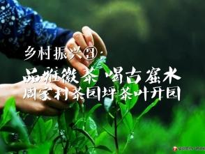 乡村振兴③:茶园坪茶叶开园
