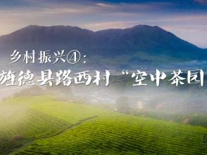 """乡村振兴④:旌德县路西""""空中茶园"""""""