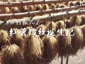 鄉村振興⑦:紅薯粉絲誕生記