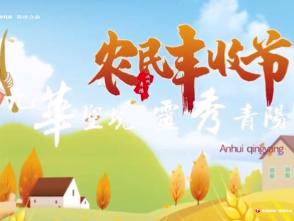 池州:青阳丰收节